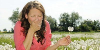 alergen, alergeni, alergie, alergologie, astm, papadie, puf, stranut